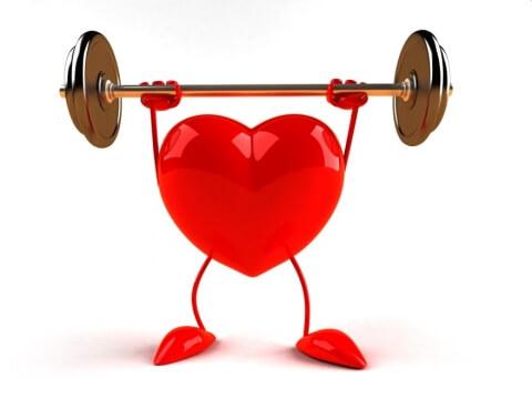 Magnesium trägt zur allgemeinen Gesundheit Ihres Herzens bei