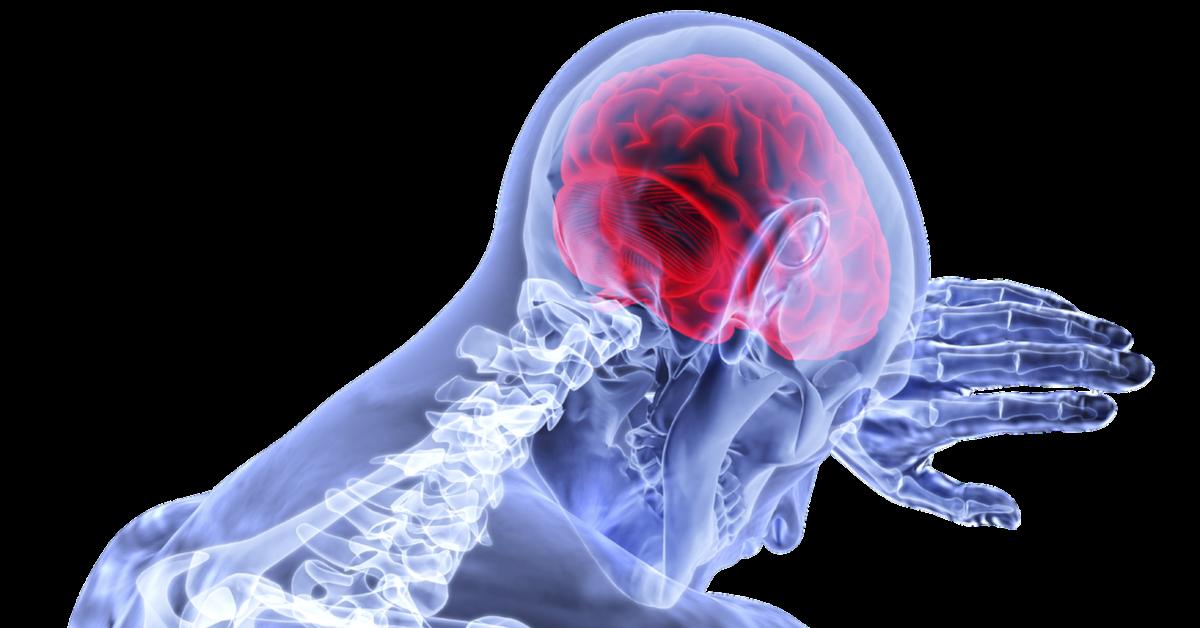 Omega-3-Präparate lindern Entzündungen des Gehirns