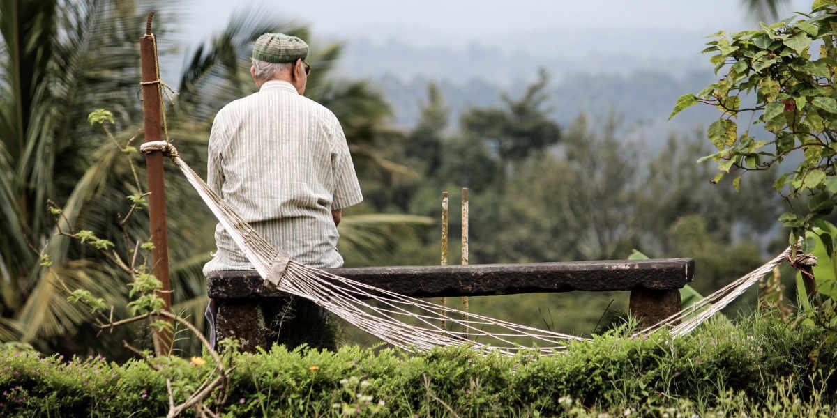 Berberin kann auch das Fortschreiten der Alzheimer-Krankheit verlangsamen