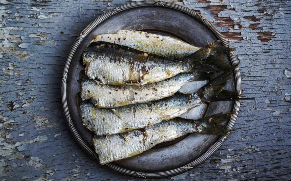 fetter Fisch und Meeresfrüchte sind reich an Omega-3