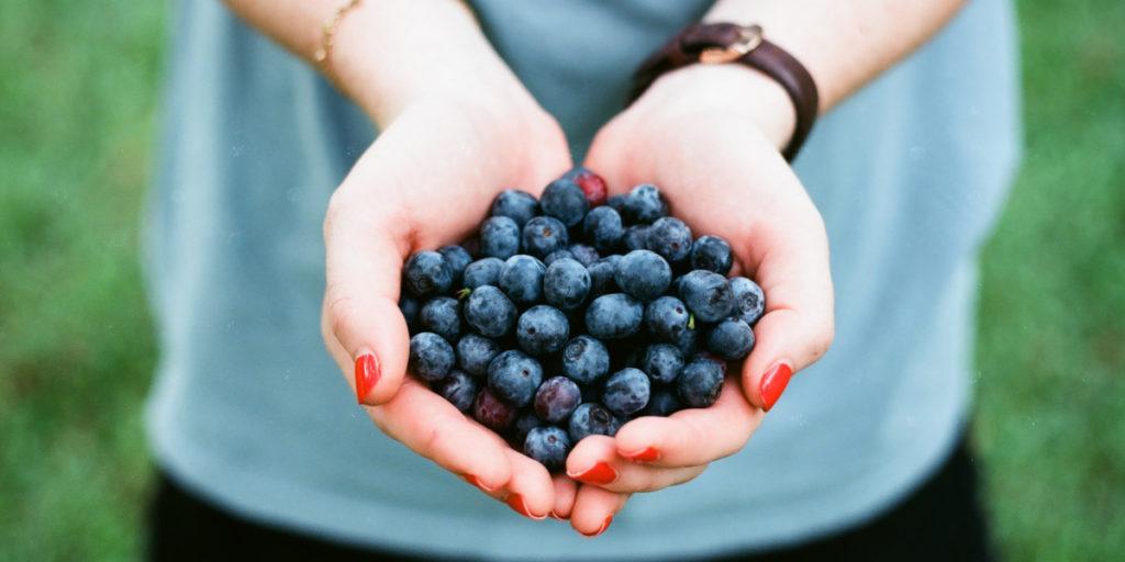 Blaubeeren sind reich an Antioxidantien, die Ihr Immunsystem stärken können